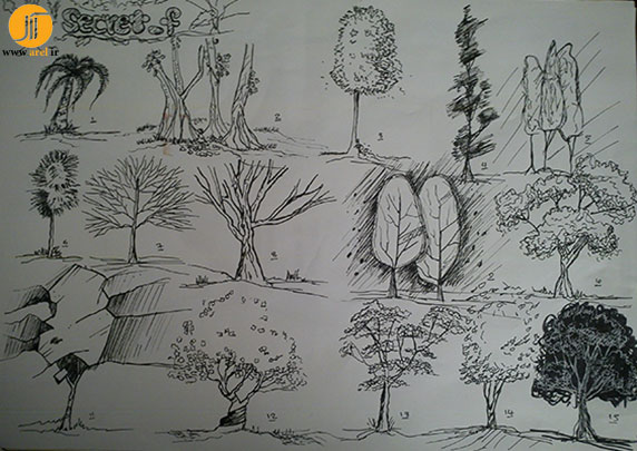 آموزش تصویری اسکیس درخت 2