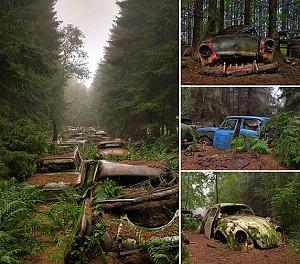 وقتی طبیعت، جلوههای تمدن بشری را به زانو درمیآورد (تصاویری که ندیده اید)