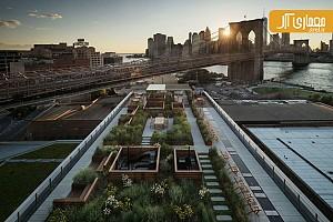 معماری و طراحی بامی سبز بر فراز آپارتمانی 17 طبقه در بروکلین نیویورک
