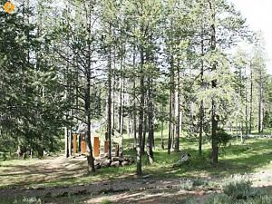 طراحی و معماری خانه مخفی در جنگل