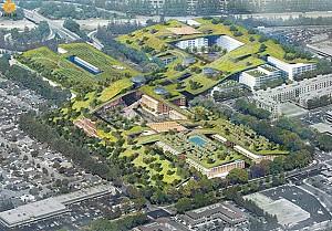 معماری منظر: طراحی بزرگترین بام سبز دنیا در کالیفرنیا