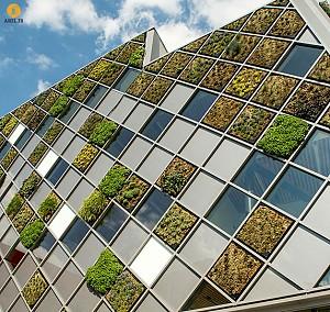 طراحی نمای ساختمان مرکز شهر با باکس های دیوار سبز