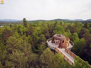معماری منظر: طراحی پلی بر فراز جنگل های ملی نیویورک