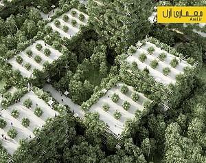 معماری سبز: طراحی شهری برخاسته از جنگل های انبوه بامبو
