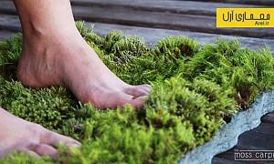 معرفی متریال: تولید فرشی از گیاه