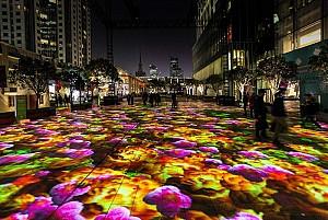 باغ دیجیتال از نور و نیلوفر آبی