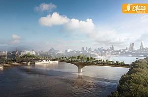 معماری خلاقانه 5 پل در حال ساخت