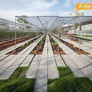 خلاقیت در طراحی زمین کشاورزی