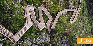 طراحی مسیر پیاده روی چوبی در جنگل های پرتغال