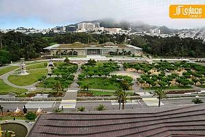 آکادمی علوم کالیفرنیا کاری از رنزو پیانو