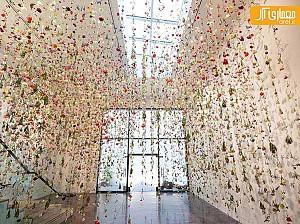 طراحی بی نظیر گالری سان فرانسیسکو با 8000 گُل