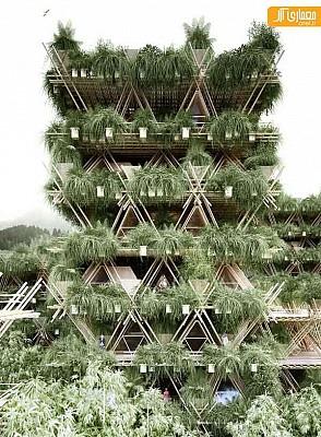 طراحی پاویلیون پکن با چوب بامبو