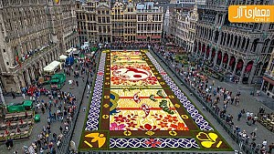 طراحی فرش گلها در بروکسل، با استفاده از 600.000 شکوفه