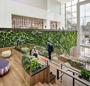 10 ایده طراحی برای باغ های عمودی