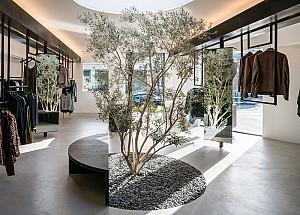 درخت زیتون وسط فروشگاه لباس در لس آنجلس!