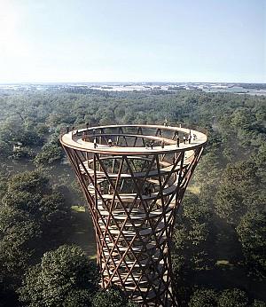 برج مشاهده میان جنگل با دیدگاه پانوراما