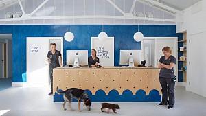 طراحی داخلی بیمارستان حیوانات با ایده تفاوت بین گربه و سگ