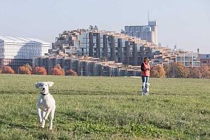 طراحی مجتمع مسکونی 79&PARK به سبک بیارکه انگلس