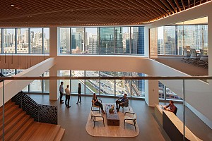طراحی دفتر کار  : سقفی که  فضای بیرون را  به داخل دعوت می کند