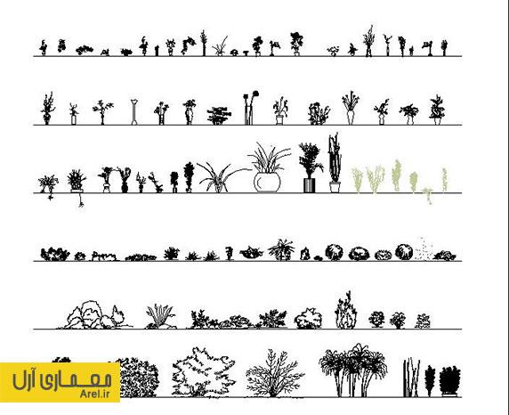 دانلود آبجکت و بلاک انواع گیاهان و درختان برای نقشه کشی اتوکد