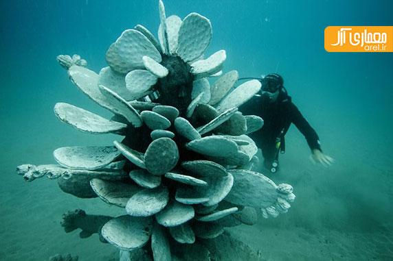 افتتاح فاز اول موزه ی آتلانتیکو در زیرآب های اقیانوس اطلس