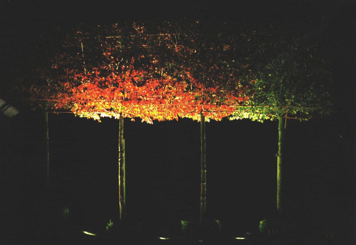 نور پردازی ویلا و باغ