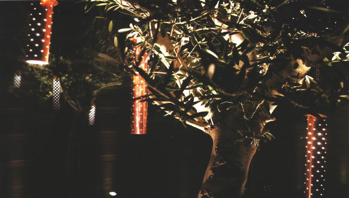 نور پردازی در درخت