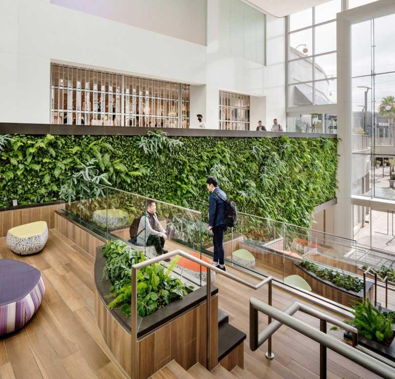 طراحی باغ های عمودی