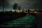 مسیر دوچرخه سواری در شب با هنر ونگوگ